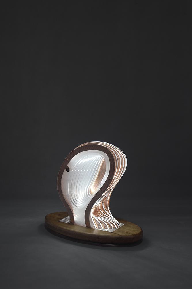 shervin hosseini-objet02